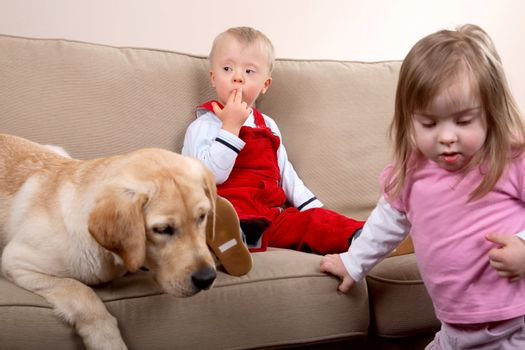 Two children with Down syndrome playing with a dog on a sofa.