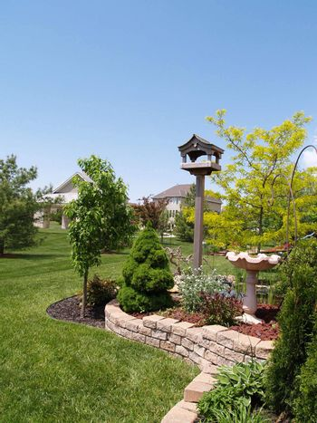 landscaped back yard with blue sky in the background