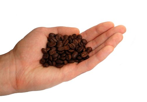 Hollow of the coffe beans in the hand