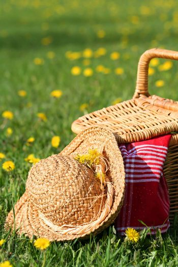 Picnic basket and hat