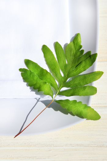 Table napkin and green fern on wooden table