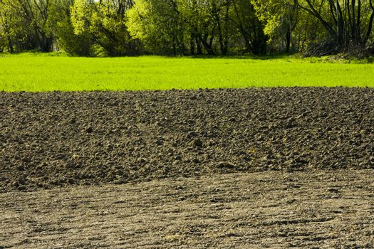 a rustic agricultural landscape with soil in the foreground and greenery in the background