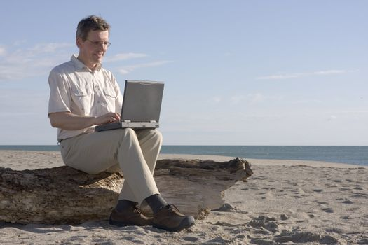 Man working with laptop while sitting on a tree trunk on a beach