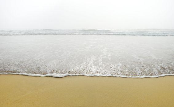 Ocean Wave in Fog