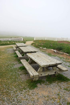 Picnic Tables on California Coast