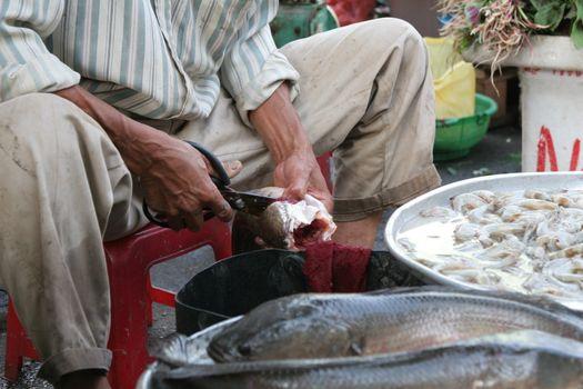 Cutting the fins