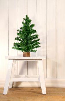 Little green fir tree on rustric white bench