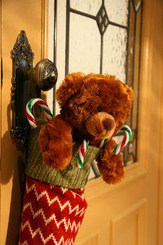 Teddy bear in stocking