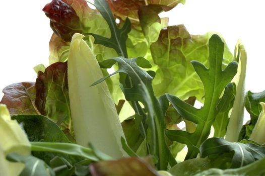 spring salad choice