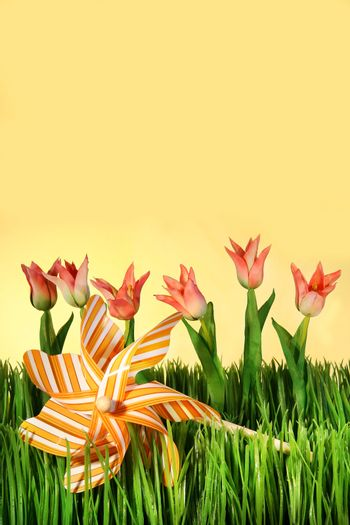 Pink spring tulips with pinwheel in the grass