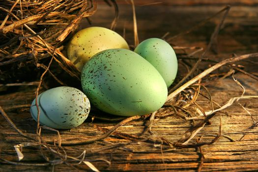 Easter eggs laying on barn wood in the barn