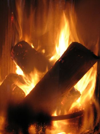 "burning logs in an oven, ecologically friendly ""green"" heating"