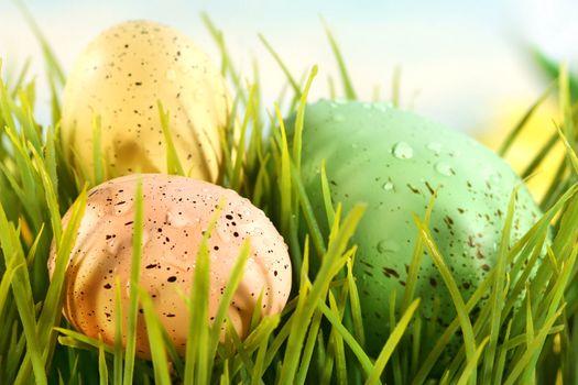 Three colored eggs