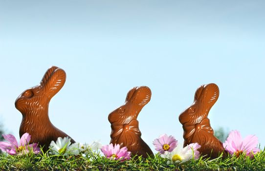 Chocolate rabbits in the grass with flowers