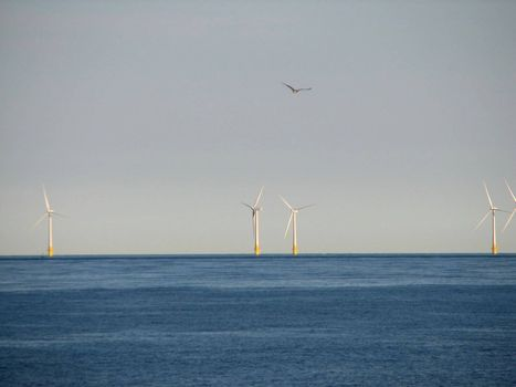 Offshore-Windmills, Norfolk, England, 2008