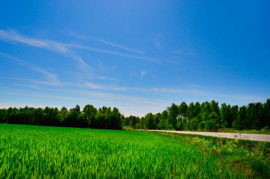 countryside road and farmland