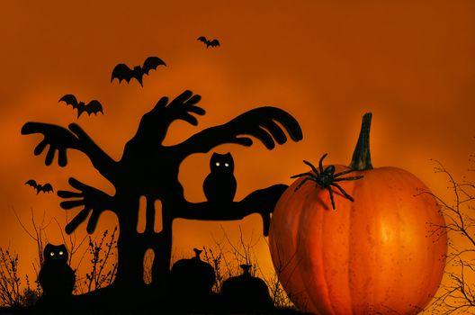 Spooky tree with pumpkin
