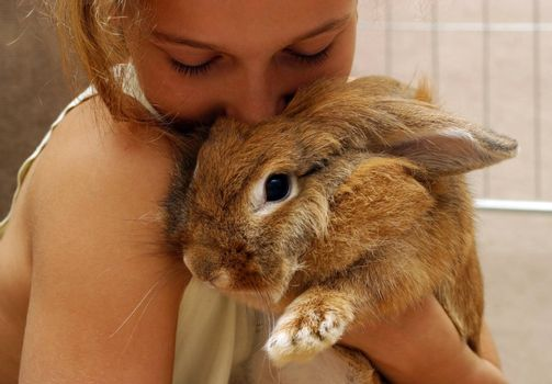 The girl plays with the rabbit