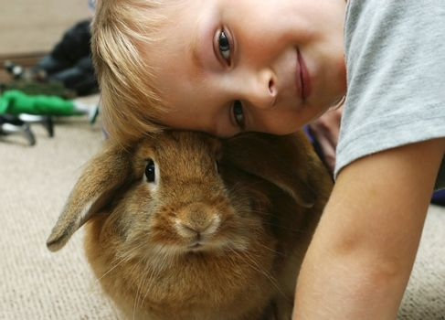 The boy plays with the rabbit