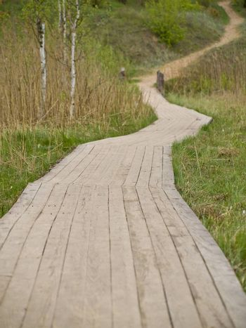 Wooden path in the green grass and nature