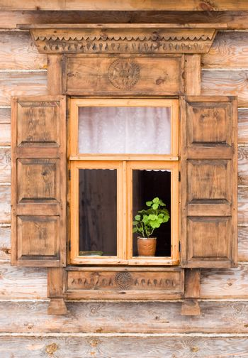 Window with the flower