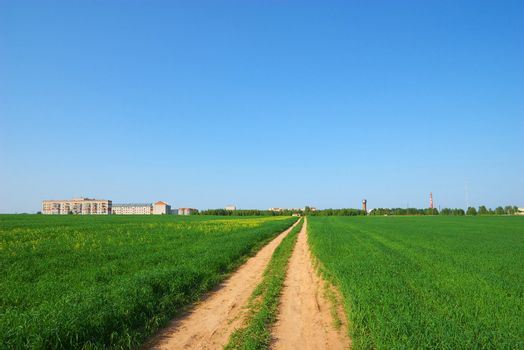 Road through green field