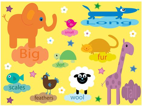 Vector illustration of a collection of animals for small children - with text - teaching about differences. I have more files for children in my portfolio.