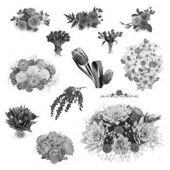 Elements for design brush art illustration flower