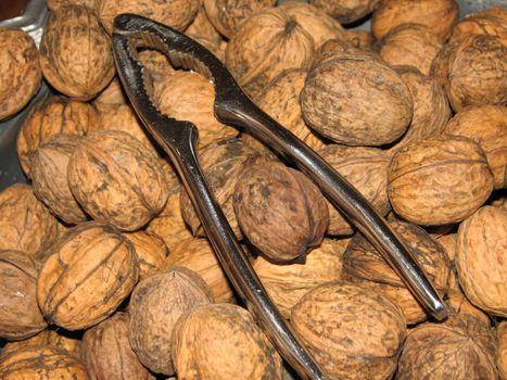 Walnuts with a Nutcracker