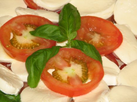 Mozarella with Tomatoes and Basil