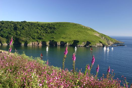 Mouth of Yealm estuary South Hams Devon