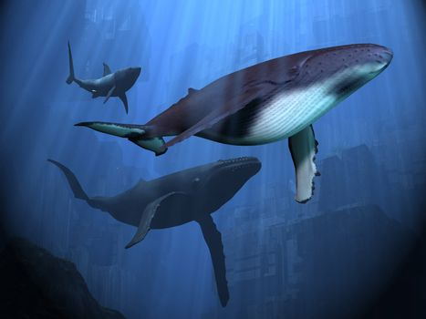 Two Humpback whales and a shark swim among ancient city ruins.