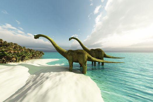 Two Diplodocus dinosaurs wade is shallow waters of a white sand beach.