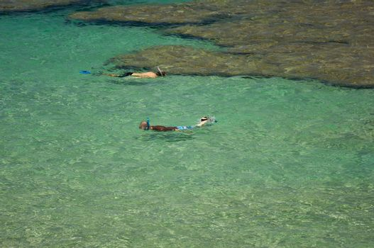 Snorkelers in the Clear Tropical Waters on a Relaxing Summer Day