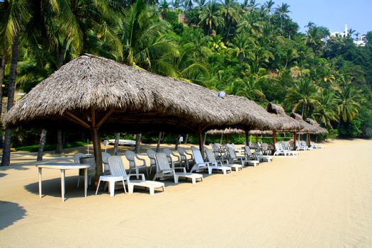 Row of beach cabanas with cairs next to palm trees