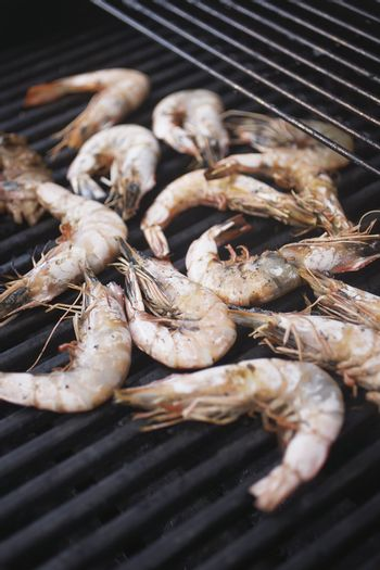 Shrimp on the Barbecue Grill