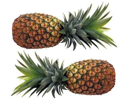 Two pineapples isolated against white background