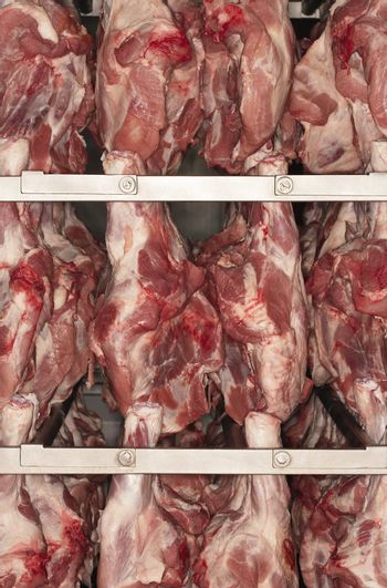 Meat Hanging on Rack