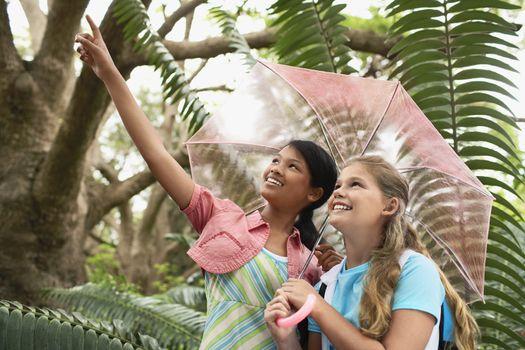 Girls in Rainforest