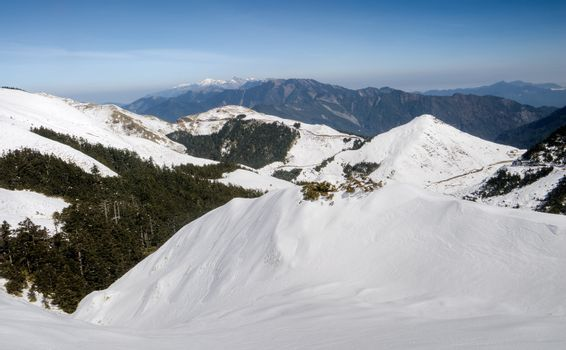 Landscape of snow mountain with blue sky in Mt Hehuan, Taiwan, Asia.