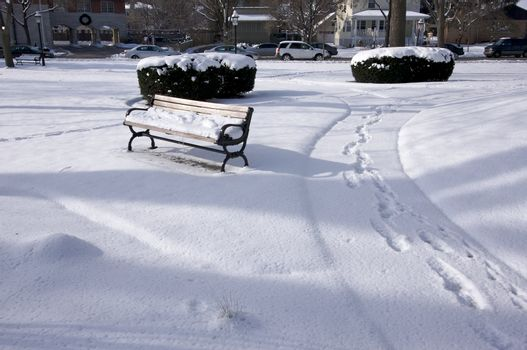Empty Snowy Bench in Chicago Park After Winter Snow