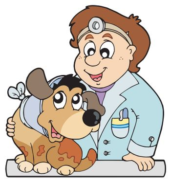 Dog with collar at veterinarian