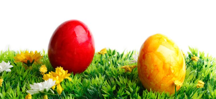 Two colored eggs on grass isolated on white background