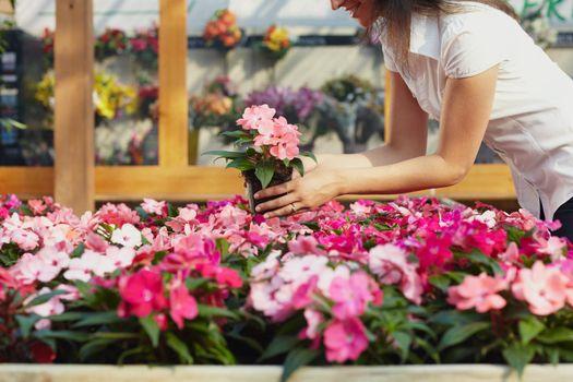 woman shopping in garden center