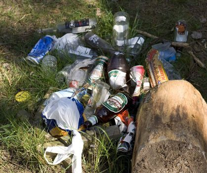 Rubbish in the forest