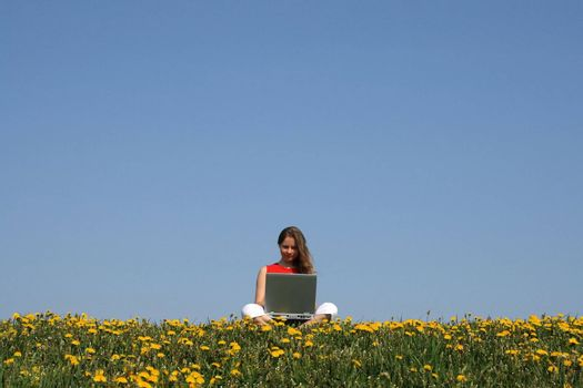Casual woman working with notebook in a flowering dandelion field.