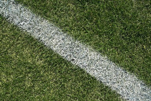 White boundary line of a playing field