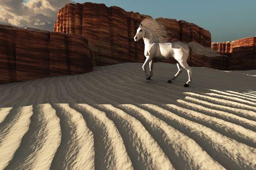 A beautiful white stallion stands near weathered canyon cliffs.