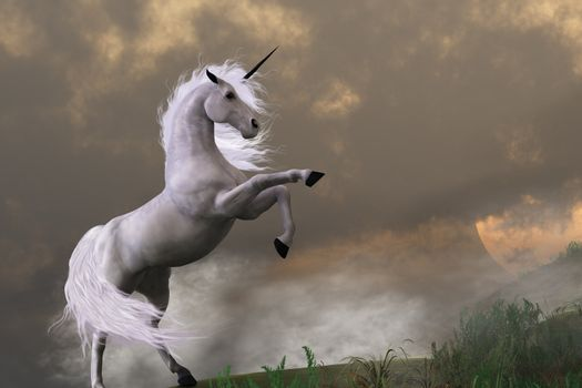 A unicorn stag asserts its power on a hill shrouded in clouds.