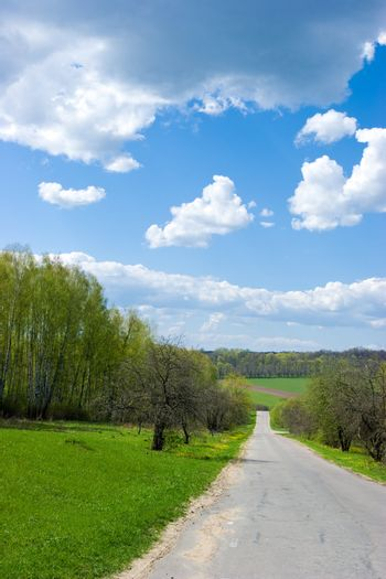 Srping rural landscape with road, green field and blue sky with clouds